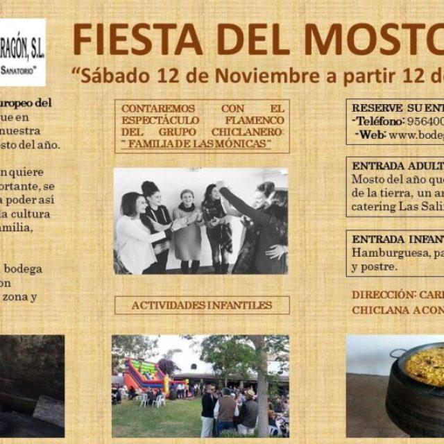 Fiesta del Mosto 2016