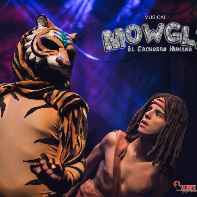 "Musical ""Mowgli, el cachorro humano"""