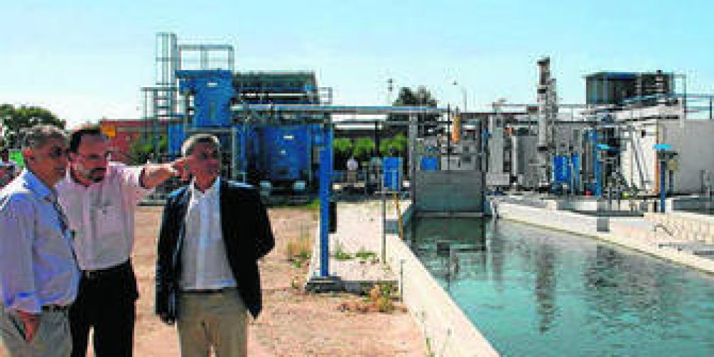 All Gas realizará el ensayo en vehículos del biocombustible